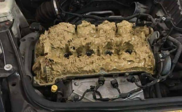 女さんがウォッシャー液5Lを間違えてエンジンに入れてしまった結果…恐ろしいことに💩